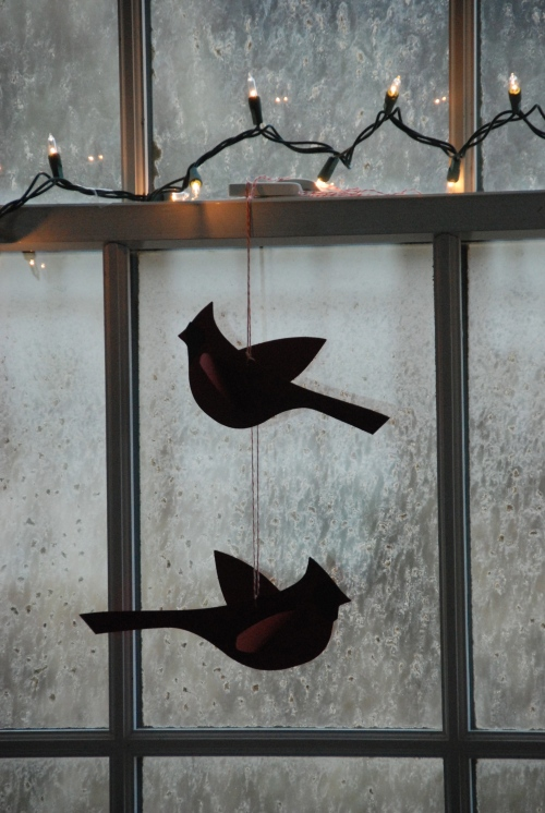 red cardinals in the window