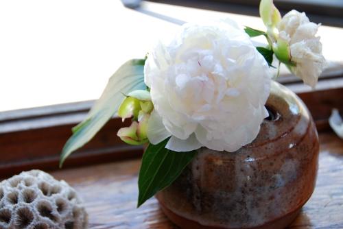 white flowers in shino vase