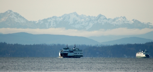 puget sound ferries . . . (http://watoxics.org/publications/puget-sound-down-the-drain-1/image)