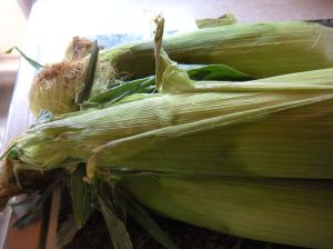 corn soup corn