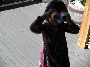 josie looking through her new binoculars. . .