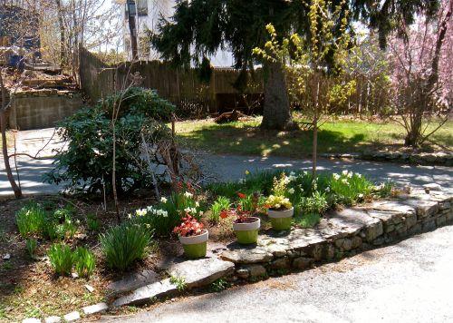 heuchera planters 3