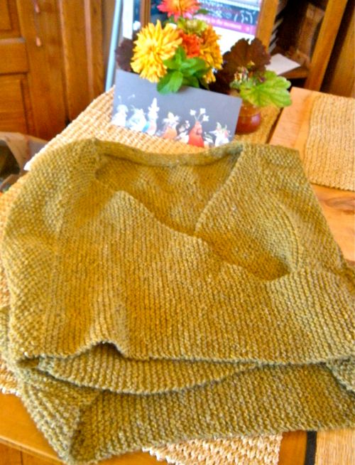 lichen moss sweater 2