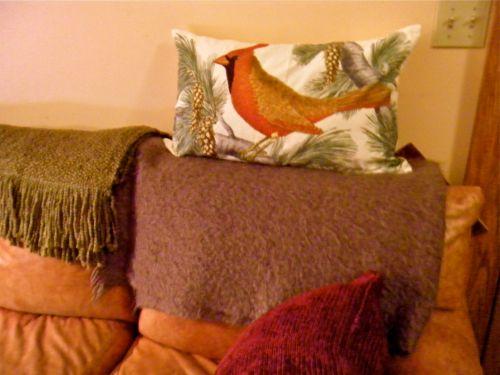 cardinal pillow 1