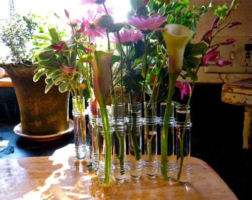 "a flexible glass tube flower vase ""lost"" and now ""found"" . . ."