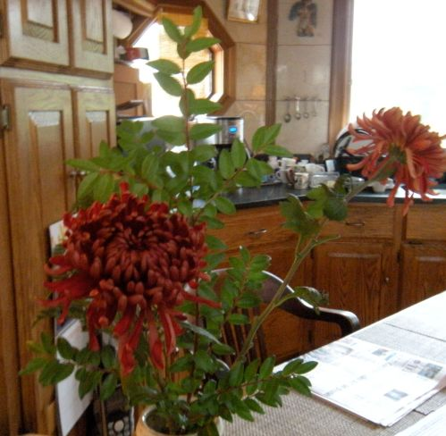 a pair of 'mums' in our kitchen . . .