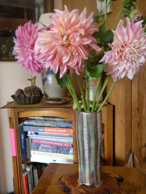 dahlias, majestic in a favorite vase . . .
