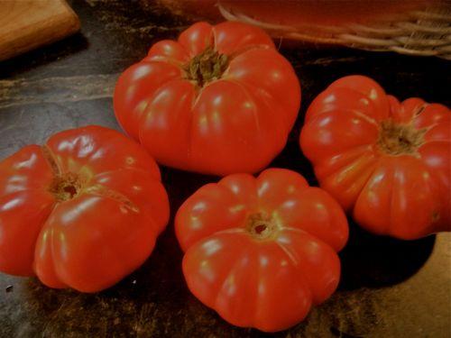 tomatoes-3